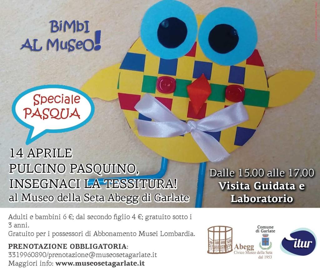 Pulcino-Pasquino-tessitura
